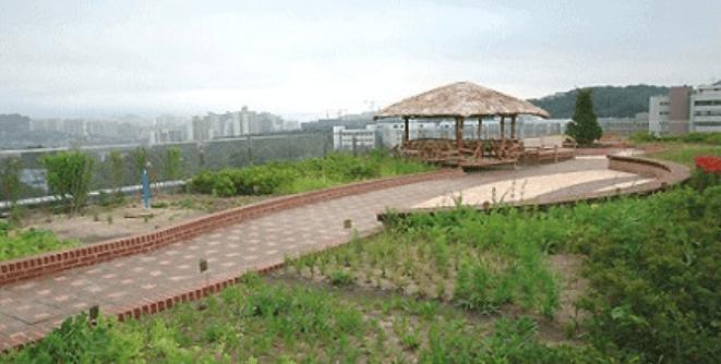 동대문구 정보화 도서관 옥상자연체험
