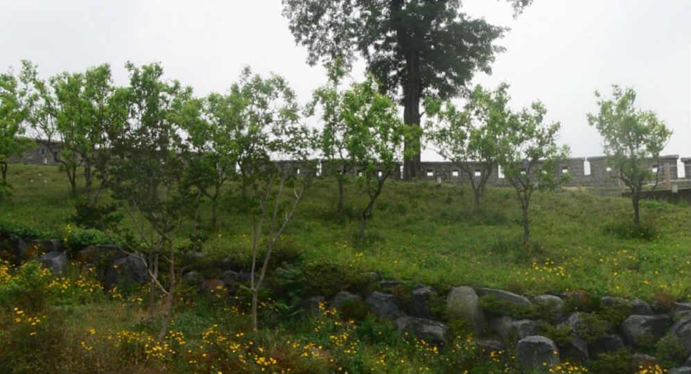동대문 역사문화공원 성곽공원