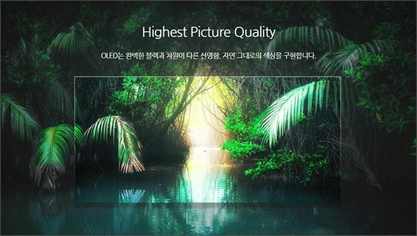 LG디스플레이-주식-제품-OLED-TV